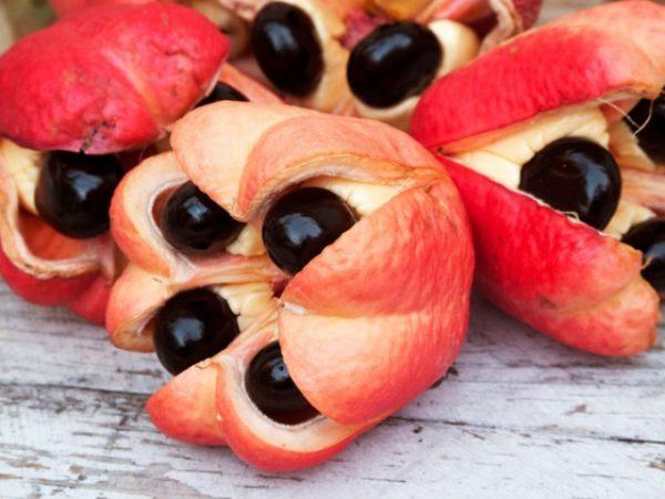 10 рідкісних фруктів