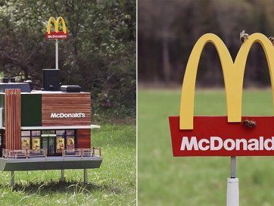 В McDonald's відкрили найменший у світі ресторан для… бджіл