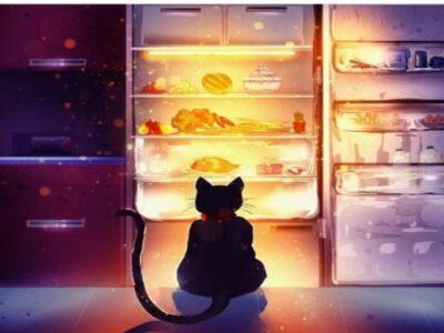 Чарівний холодильник – топ 5 продуктів, які необхідно утилізувати