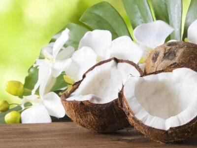 П'ять шокуючих фактів про кокос