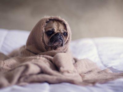 ТОП 5 перевірених способів вберегтись в період простуд