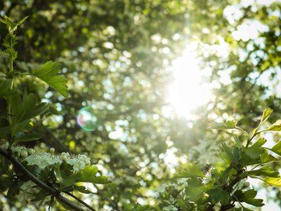 6 ознак, що вам не вистачає сонячного світла