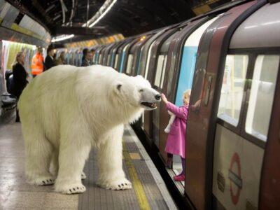 Топ 5 найбільших тварин на планеті