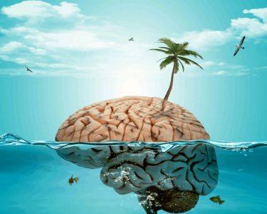 Прокачай мозок: Топ занять, що допоможуть стати розумним
