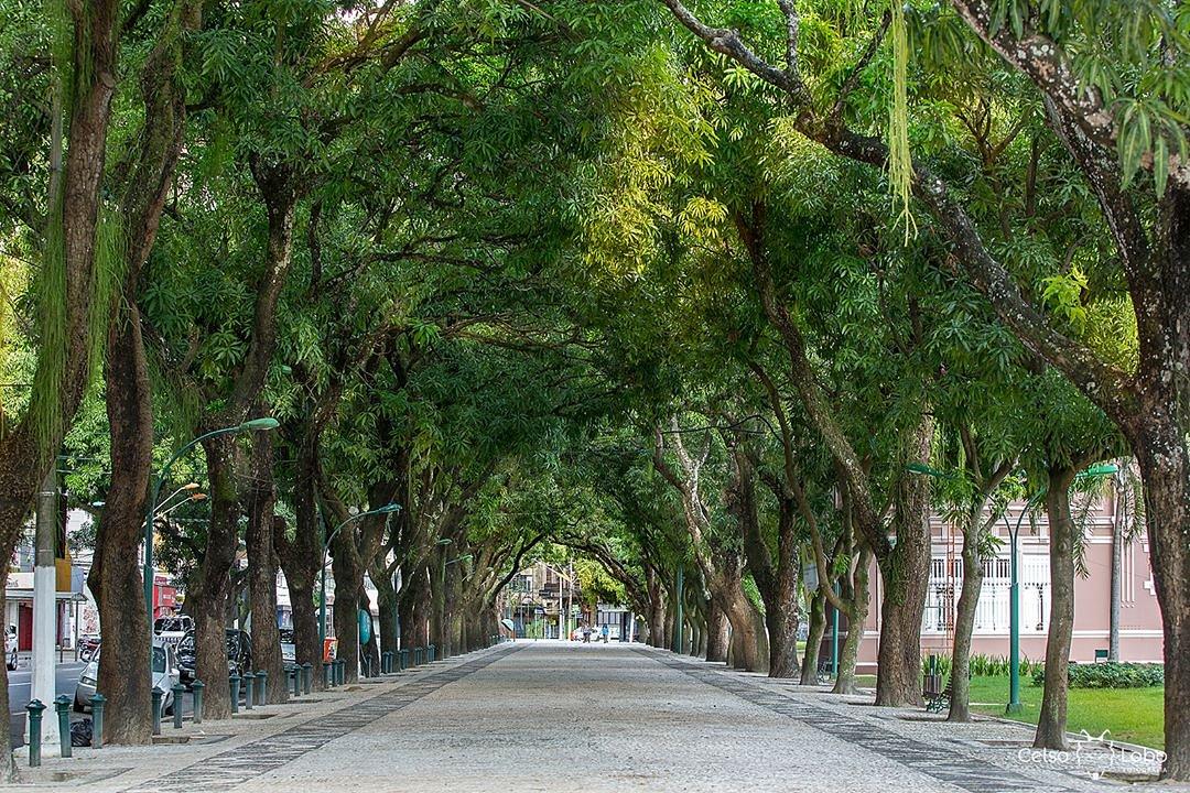 tunel-in-brazil